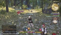 Final Fantasy XIV: A Realm Reborn_1st fights
