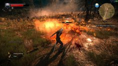 The Witcher 3: Wild Hunt_Wild Hunt