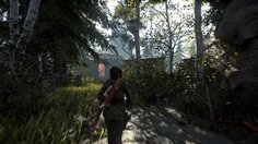 Rise of the Tomb Raider: 20 Year Celebration_PS4 Pro Enriched Visuals