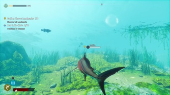 Maneater_Gameplay #1 - Jeune requin (PC)