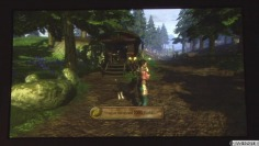 Fable 2_GDC: Short gameplay