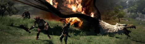Dragon's Dogma: Griffin Screens
