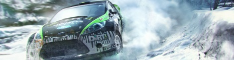 Images of DiRT 3