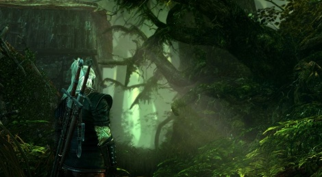 New images for The Witcher 2