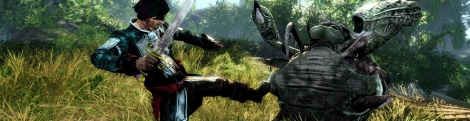 Risen 2 new images