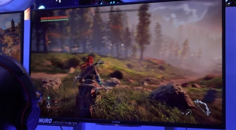 TGS: More Horizon Zero Dawn
