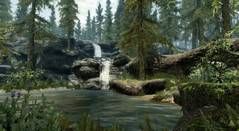 The Elder Scrolls V images