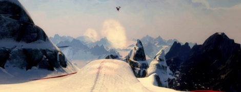 The landescapes of SSX