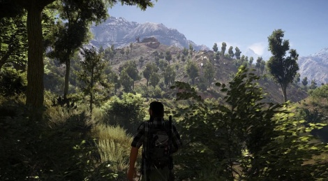 Wildlands in the PC sunlight
