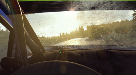 WRC 7 preview video